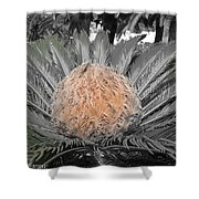 Close Up Palm Shower Curtain