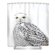 Close Up Snowy Shower Curtain
