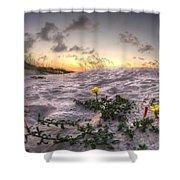 Closeup Flowers On The Beach Shower Curtain