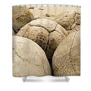Closeup Of Famous Spherical Moeraki Boulders Nz Shower Curtain