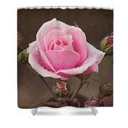 Clothed In Natures Jewels Shower Curtain