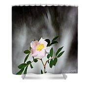 Cloud Mountain Cherokee Rose Shower Curtain