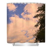 Cloud Slide Shower Curtain