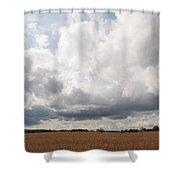 Clouds Abound Shower Curtain