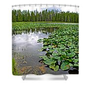 Clouds Among The Lily Pads In Swan Lake In Grand Teton National Park-wyoming  Shower Curtain