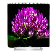 Clover Flower Shower Curtain