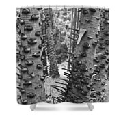 Cluster- Black And White Shower Curtain