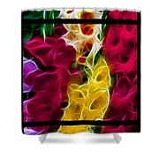 Cluster Of Gladiolas Triptych  Shower Curtain