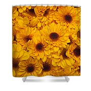 Cluster Of Yellow Blooms Shower Curtain