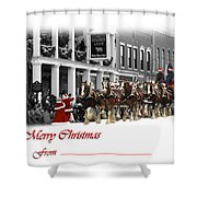 Clydesdale  Team Christmas Card Shower Curtain