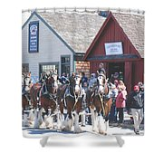 Clydesdales In Mystic Shower Curtain