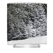 Coal Miner's Trail Shower Curtain