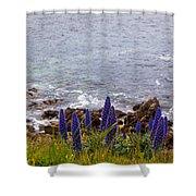 Coastal Cliff Flowers Shower Curtain