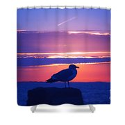 Coastal Concord Shower Curtain
