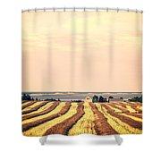 Coastal Farm Pei Shower Curtain by Edward Fielding