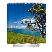 Coastal Farmland Landscape With Pohutukawa Tree Shower Curtain