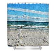 Coastal Life Shower Curtain