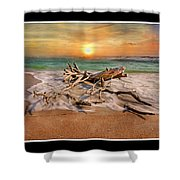 Coastal Morning  Shower Curtain