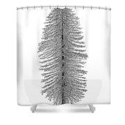 Coastal Redwood Shower Curtain
