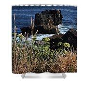 Coastal View From Cascais  Shower Curtain