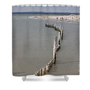 Coastal Vision Shower Curtain