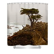 Coastline Cypress Shower Curtain