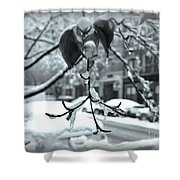 Coat Of Ice - Winter In New York Shower Curtain