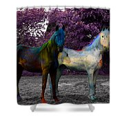 Coats Of Many Colors Shower Curtain