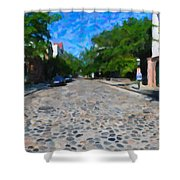 Cobblestone Street Shower Curtain
