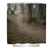 Cobweb Shower Curtain