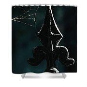 Cobwebs Shower Curtain