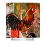 Cockadoodledoo Shower Curtain