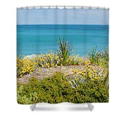 Cockburn Beach Dunes 2am-112161 Shower Curtain