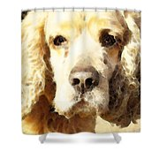 Cocker Spaniel Art - Mellow Yellow Shower Curtain