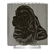 Cocker Spaniel Shower Curtain