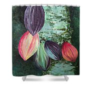 Cocoa Pods Shower Curtain