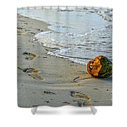 Coconut On The Sand Shower Curtain