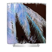 Coconut Palm - Reunion Island - Indian Ocean Shower Curtain