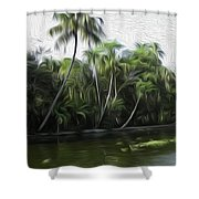 Coconut Trees And Other Plants Lined Up Shower Curtain