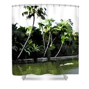 Coconut Trees And Others Plants In A Creek Shower Curtain
