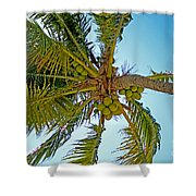 Cocos Shower Curtain