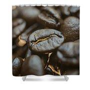 Coffee Beans Macro 3 Shower Curtain