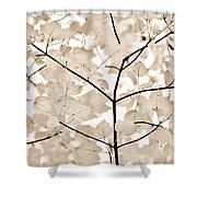 Coffee Brown Leaves Melody Shower Curtain