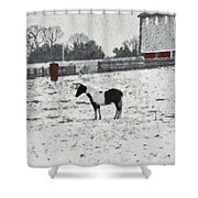 Cold And Lonely Shower Curtain