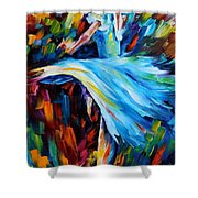 Cold Ballet Shower Curtain