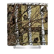 Cold Birds Shower Curtain