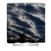 Cold Cloudscape Shower Curtain
