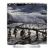 Cold Death Shower Curtain