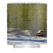 Cold Drink Shower Curtain