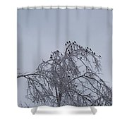 Cold Landing  Shower Curtain
